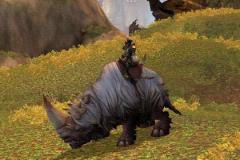 белый-шерстистый-носорог-05