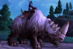 белый-шерстистый-носорог-06